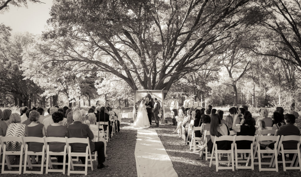 outdoor ceremony under a giant oak tree
